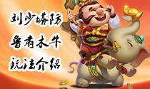 刘少塔防14期- -鲁肃木牛简单介绍